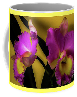 Coffee Mug featuring the photograph Blooming Cattleya Orchids by D Davila