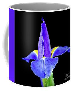 Blooming Iris 1318-1 Coffee Mug