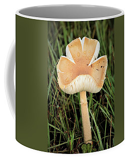 Coffee Mug featuring the photograph Blooming Mushroom by Sheila Brown