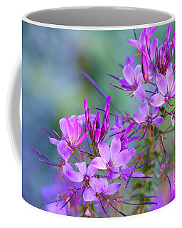 Coffee Mug featuring the photograph Blooming Phlox by Alana Ranney