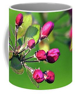 Blooming Spring Poetry Coffee Mug