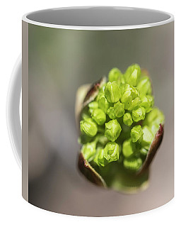 Blooming Star Coffee Mug