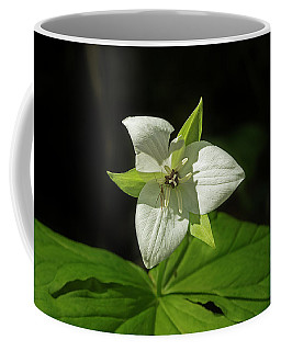 Blooming Trillium Coffee Mug