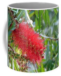 Blooms - Gulf State Park Coffee Mug