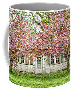 Blossom Time Taking Over  Coffee Mug by Kathi Mirto