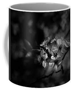 Coffee Mug featuring the photograph Blossoms by Karen Harrison