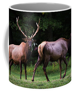 Coffee Mug featuring the photograph Blown Off by Andrea Silies