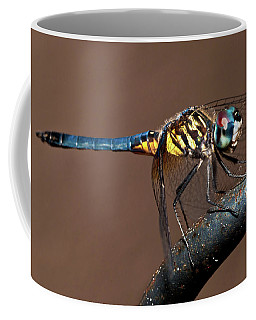 Blue And Gold Dragonfly Coffee Mug