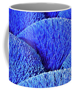 Blue Asia Sound Coffee Mug
