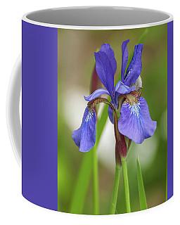 Coffee Mug featuring the photograph Blue Bearded Iris by Brenda Jacobs