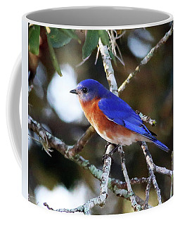 Blue Bird Coffee Mug by Lamarre Labadie
