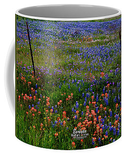 Coffee Mug featuring the photograph Bluebonnets #0487 by Barbara Tristan