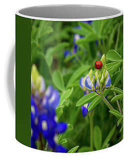 Texas Blue Bonnet And Ladybug Coffee Mug
