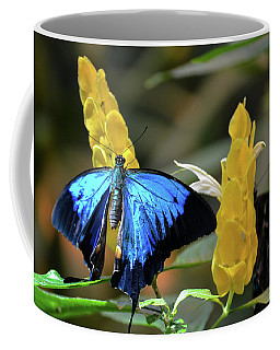 Blue Beauty Butterfly Coffee Mug