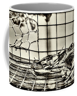 Blue Crabs - Vintage Coffee Mug