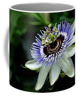 Blue Crown Passion Flower Coffee Mug