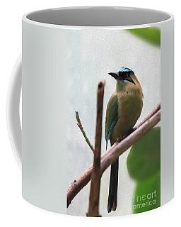 Blue-crowned Motmot Oil Coffee Mug