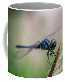 Blue Dragonfly Closeup Coffee Mug by Michelle Meenawong