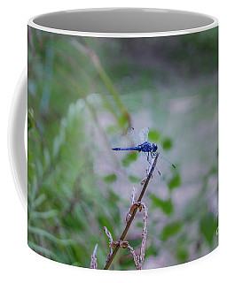 Coffee Mug featuring the photograph Blue Dragonfly by Michelle Meenawong