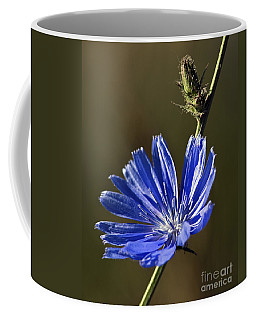 Blue Dream.. Coffee Mug