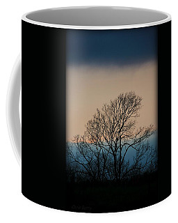 Coffee Mug featuring the photograph Blue Dusk by Chris Berry