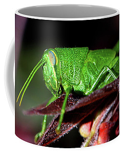 Blue Eyed Green Grasshopper 001 Coffee Mug