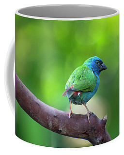 Blue-faced Parrotfinch Coffee Mug