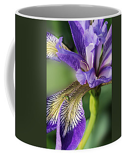 Coffee Mug featuring the photograph Blue Flag  by Susan Capuano