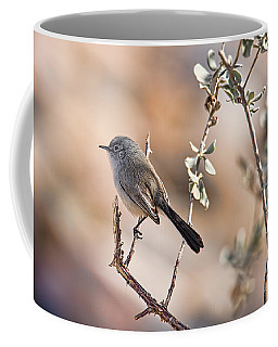 Coffee Mug featuring the photograph Black-tailed Gnatcatcher by Dan McManus