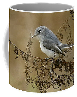 Blue-gray Gnatcatcher Coffee Mug by Myrna Bradshaw