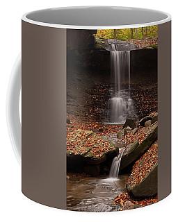 Blue Hen Falls And Cascade Coffee Mug