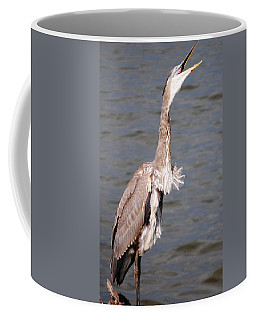 Coffee Mug featuring the photograph Blue Heron Calling by Sumoflam Photography