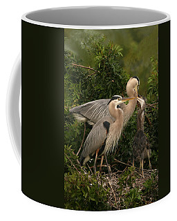 Coffee Mug featuring the photograph Blue Heron Family by Shari Jardina