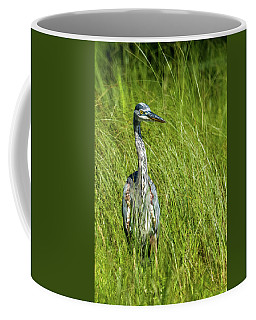 Coffee Mug featuring the photograph Blue Heron In A Marsh by Paul Freidlund