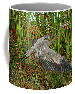Blue Heron Take-off Coffee Mug
