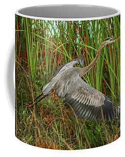 Blue Heron Take-off Coffee Mug by Tom Claud