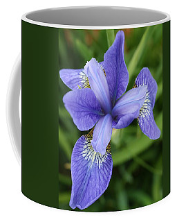 Coffee Mug featuring the photograph Blue Iris 5 by Bruce Bley