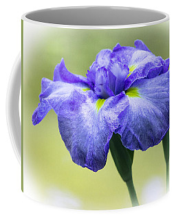 Blue Iris Coffee Mug by Venetia Featherstone-Witty
