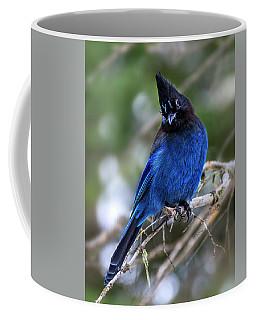 Blue Jade  Coffee Mug