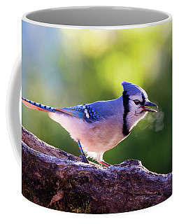 Coffee Mug featuring the photograph Blue Jay Breath by Mircea Costina Photography