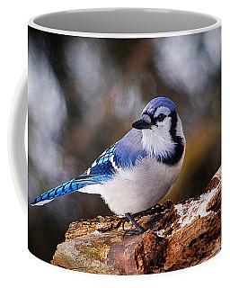 Blue Jay Day Coffee Mug