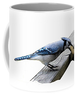 Blue Jay Eating Peanut Coffee Mug