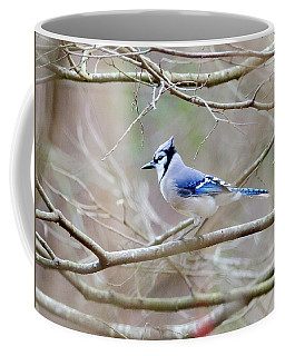 Coffee Mug featuring the photograph Blue Jay by George Randy Bass
