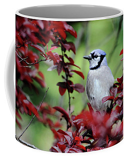 Blue Jay In The Plum Tree Coffee Mug by Trina Ansel