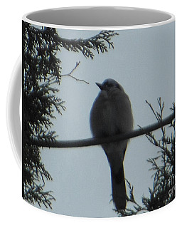 Blue Jay On Wire Coffee Mug