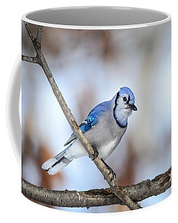 Coffee Mug featuring the photograph Singing My Song by Steven Santamour