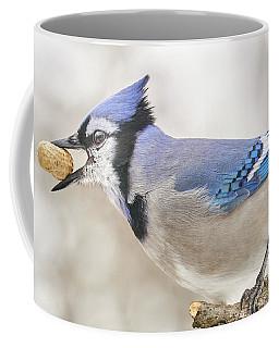 Blue Jay With Peanut, In January Coffee Mug