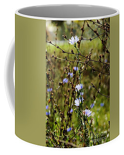 Blue Meadow Flowers Coffee Mug