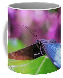 Blue Morpho  Butterfly 2 Coffee Mug