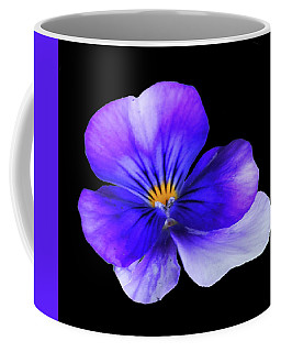 Blue Pansy In Black Coffee Mug